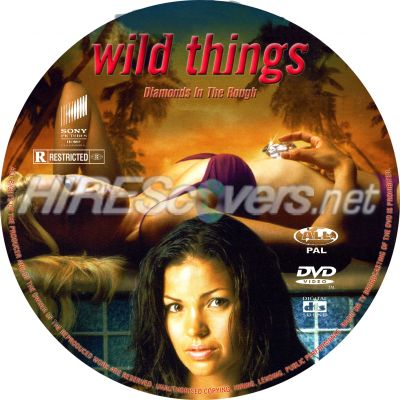 DVD Cover Custom DVD covers BluRay label movie art - DVD ...